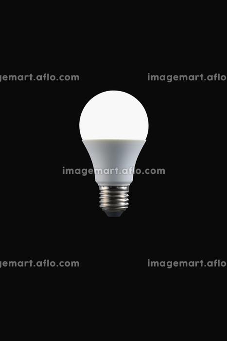 LED電球の販売画像