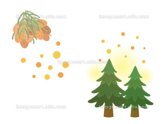 スギ花粉 花粉が飛ぶ イラスト素材の販売画像