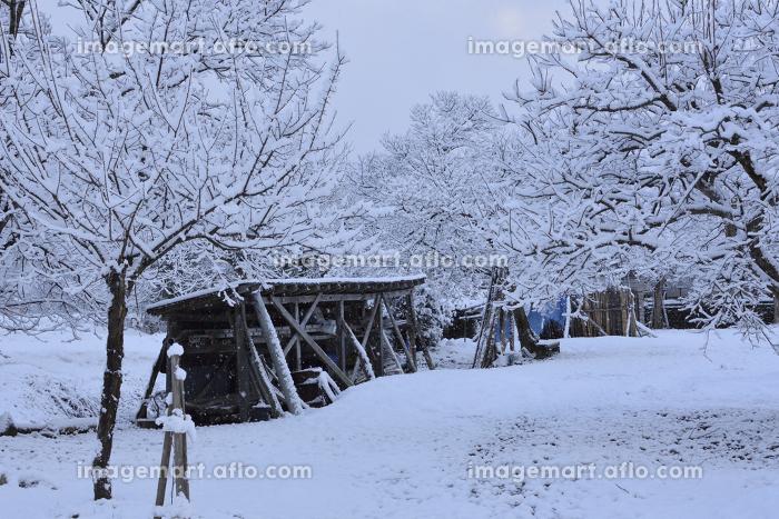 冬の農地の販売画像
