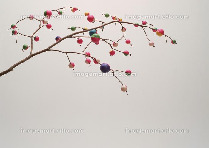 餅花の販売画像