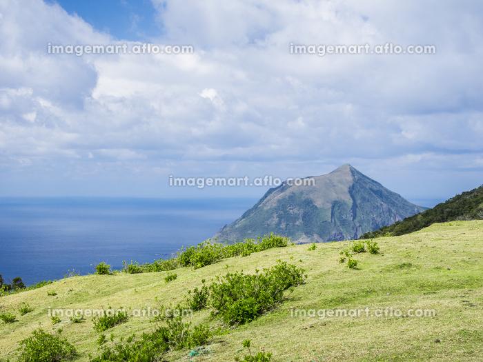 八丈島のふれあい牧場から風景 3月の販売画像