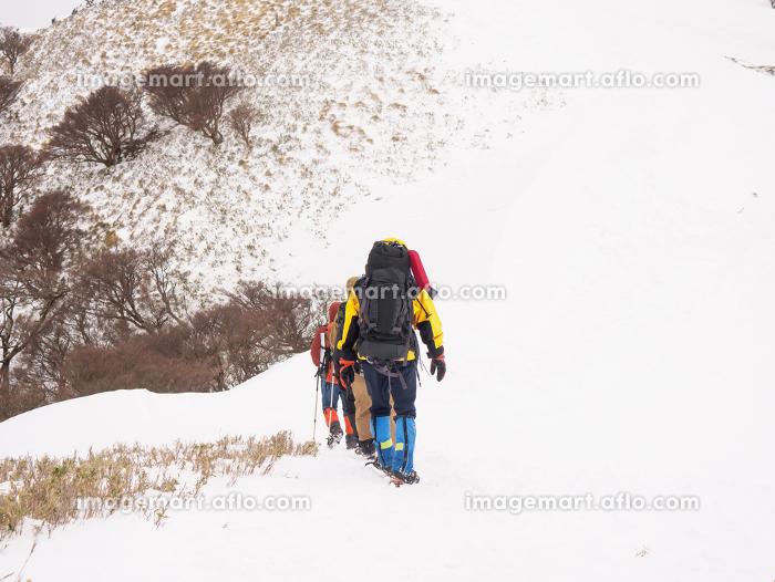 雪山を歩く登山者たちの販売画像