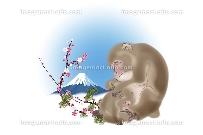 サルの親子と富士山と梅 イラストの販売画像