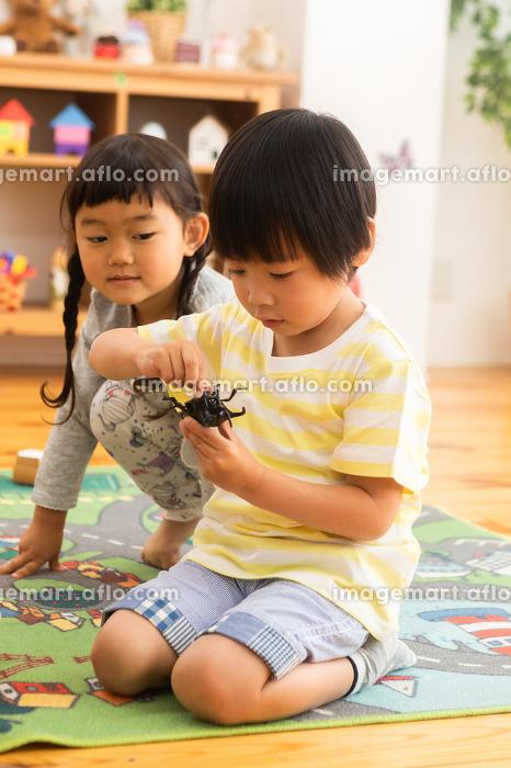おもちゃで遊ぶ子供たちの販売画像