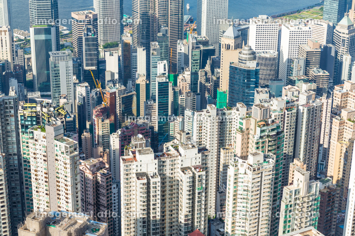 Hong Kong skylineの販売画像
