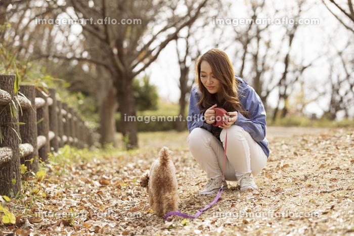 ペットと散歩する女性の販売画像
