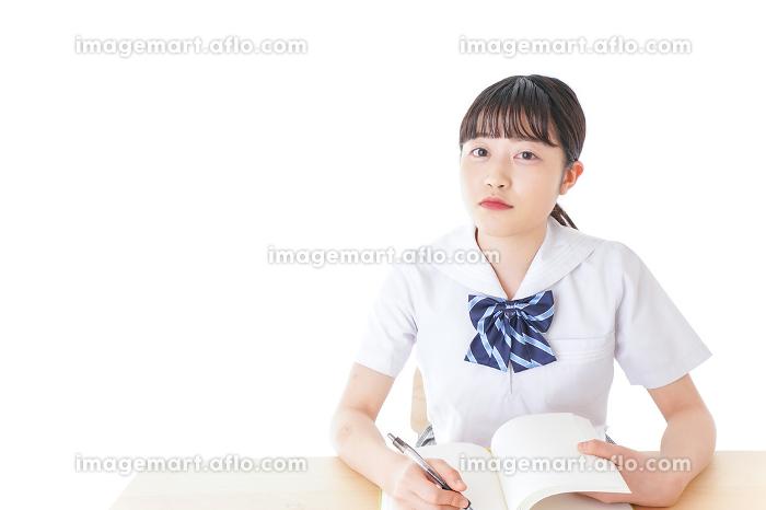 授業を受ける若い女子学生の販売画像