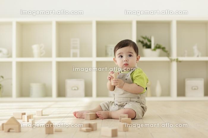 木の積み木で遊ぶ赤ちゃんの販売画像