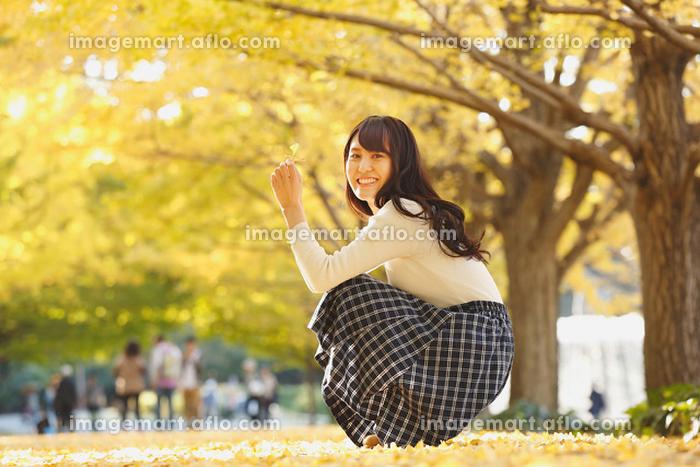 イチョウの紅葉を楽しむ日本人女性の販売画像