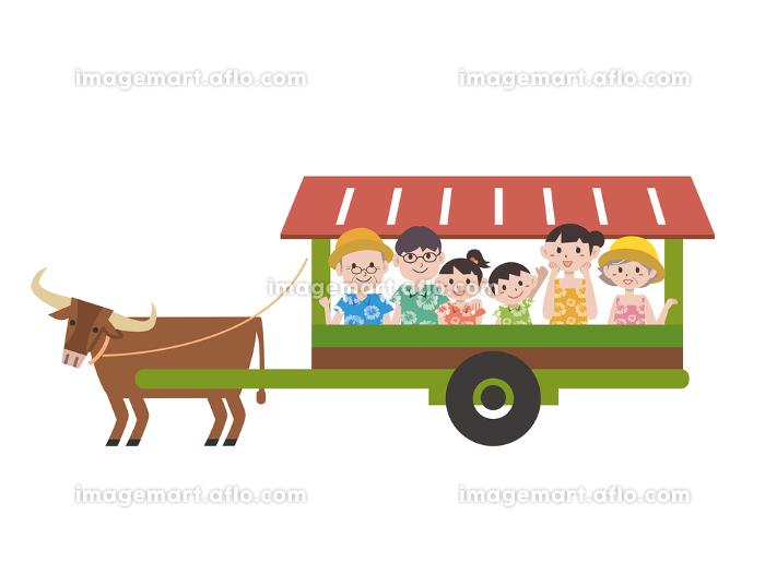 沖縄の水牛イラストの販売画像
