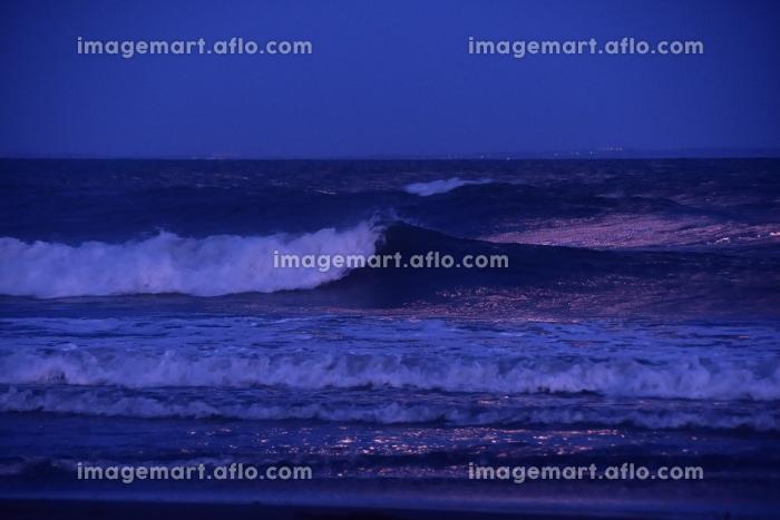 月明りの海の販売画像