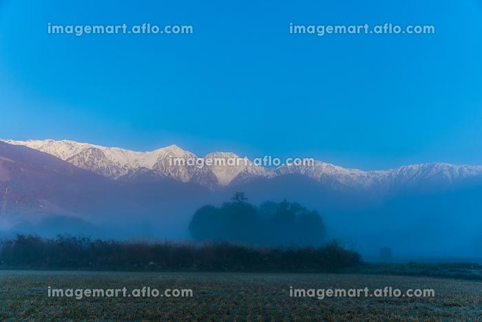 朝霧の白馬連峰の販売画像