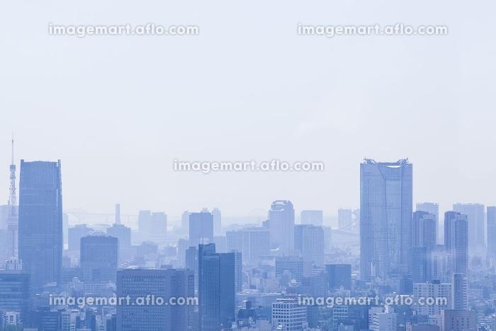 都庁展望台から見た眺めの販売画像
