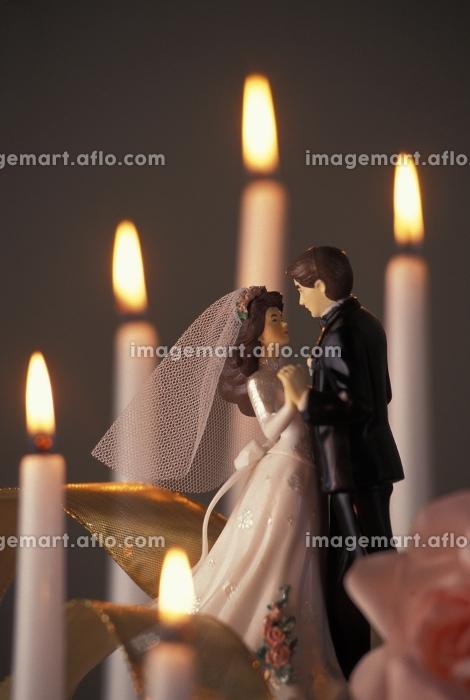 花嫁 パーテイー 伝統の販売画像