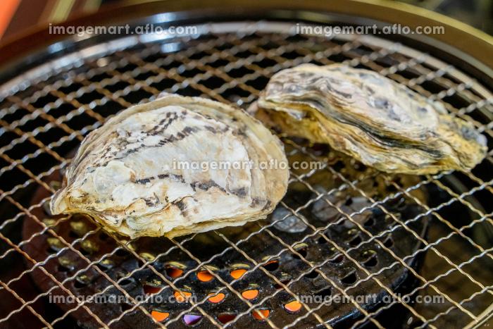 牡蠣の販売画像