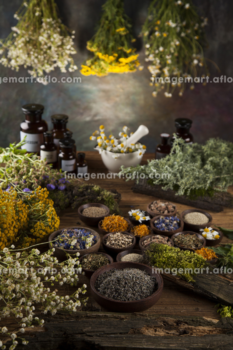 Assorted natural medical herbs and mortar on wooden table backgroundの販売画像