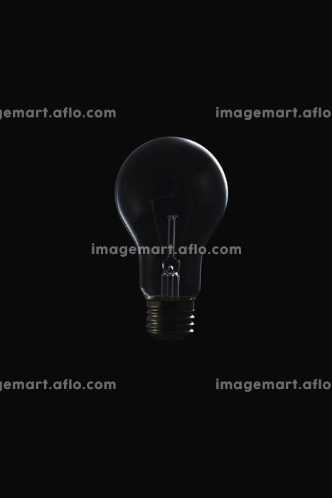 白熱電球の販売画像