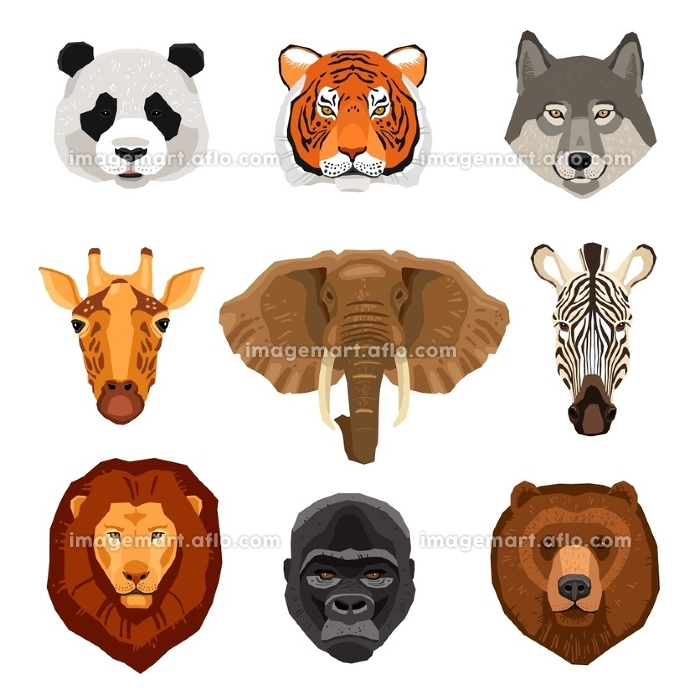 Cartoon Animals Portraits Set. Images set of wild animals portraits drawn in flat style isolated vector illustration