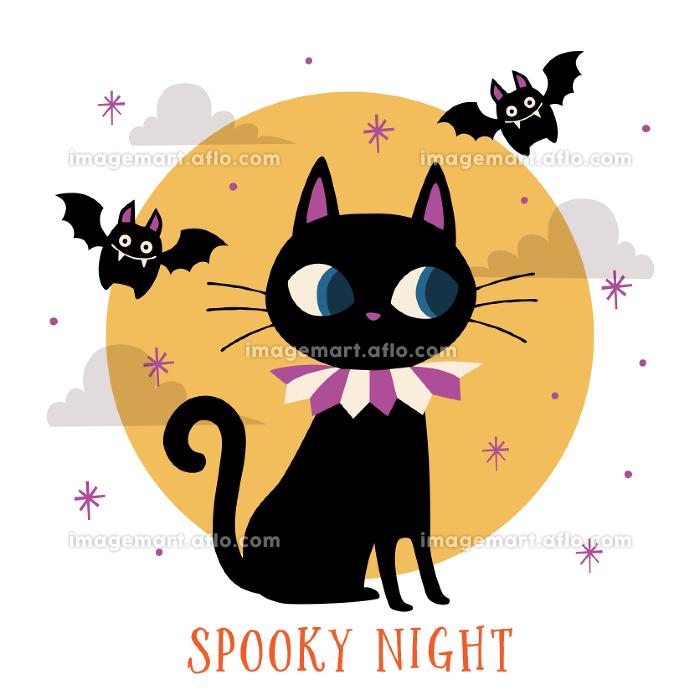 黒猫とコウモリ、ハロウィンの夜の販売画像