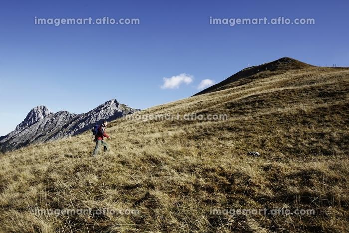 山登りをする男性の販売画像