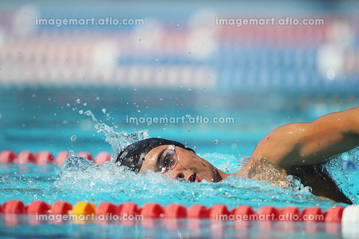 男子競泳 自由形の販売画像