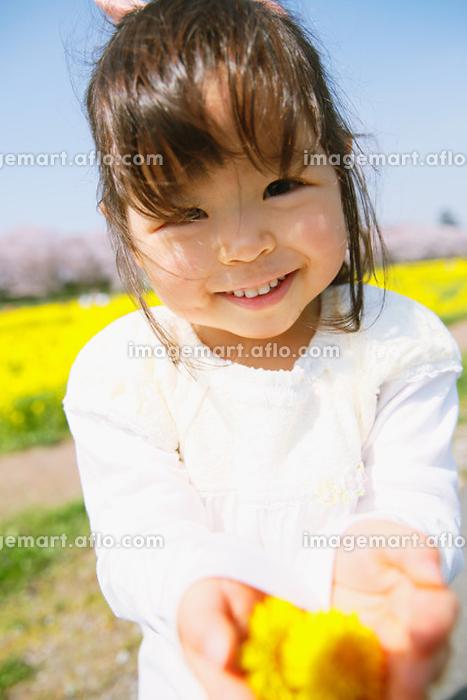 タンポポの花を持つ女の子