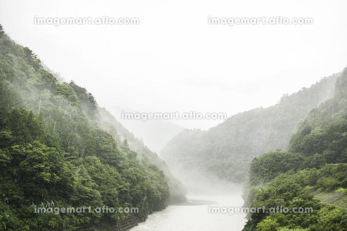 悪天候で雲のかかる山と濁流の川の販売画像