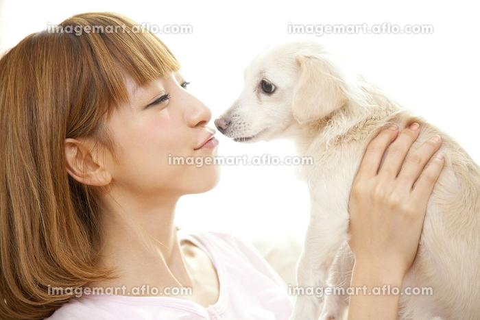 チワックスとキスをする女性の販売画像