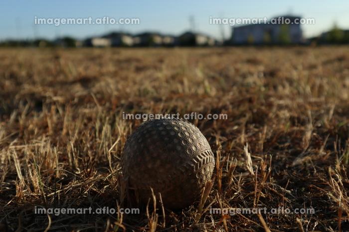 空き地に置かれた野球ボールの販売画像