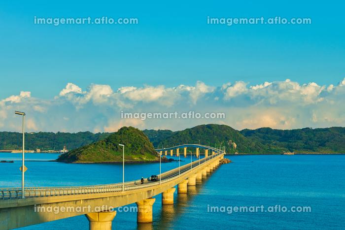 爽やかな夏の朝の角島大橋の眺めの販売画像