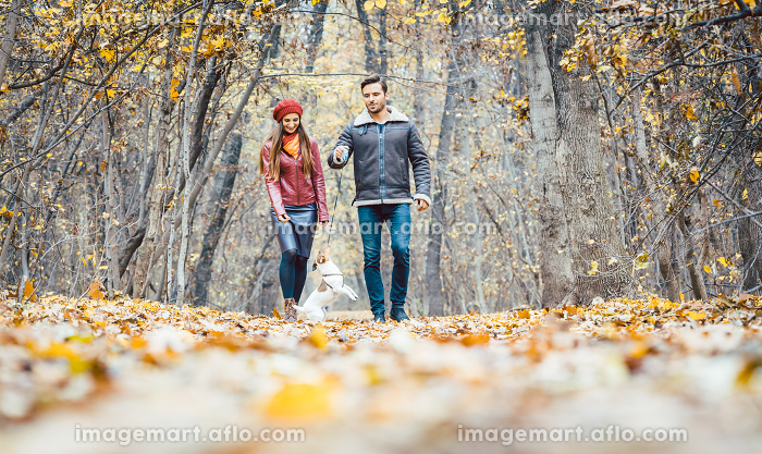 Young couple walking with their dog in a colorful autumn forest