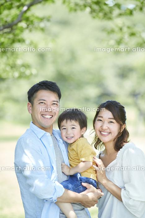 春の公園の日本人家族
