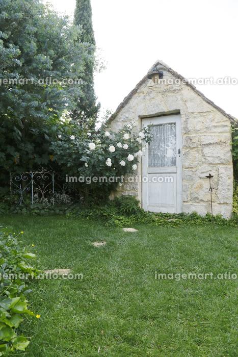緑の溢れる庭と小さな小屋