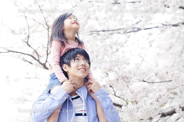 父親に肩車をしてもらい桜を眺める笑顔の女の子