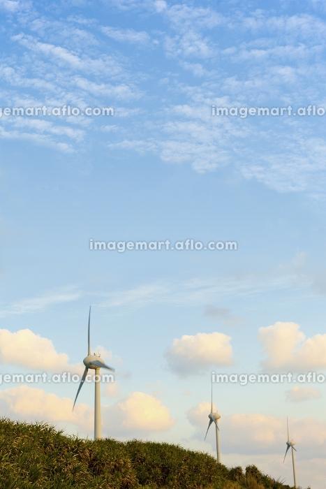 西平安名崎の風力発電 宮古島の販売画像