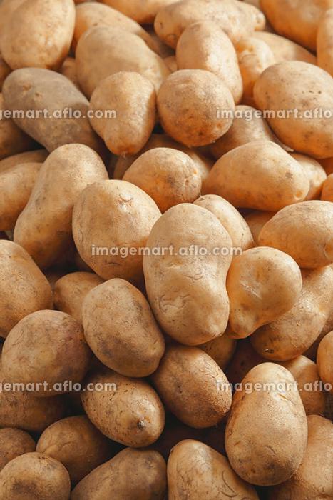 たくさんのジャガイモ