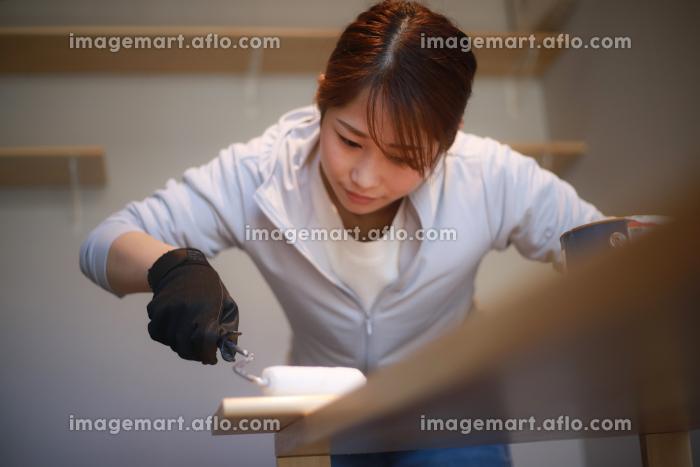 ローラー塗装をする女性 DIYイメージの販売画像