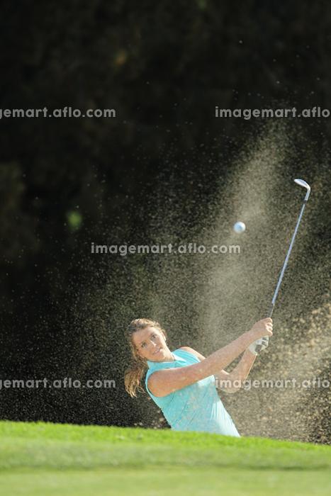 ゴルフの販売画像