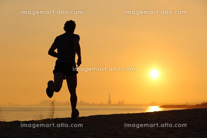 ジョギング ジョガー スポーツマンの販売画像