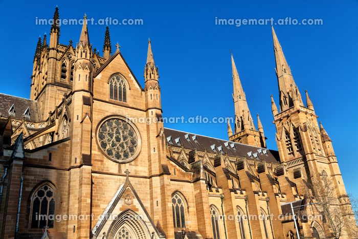 in  austalia  sydney the  antique  building cathedral st mary church
