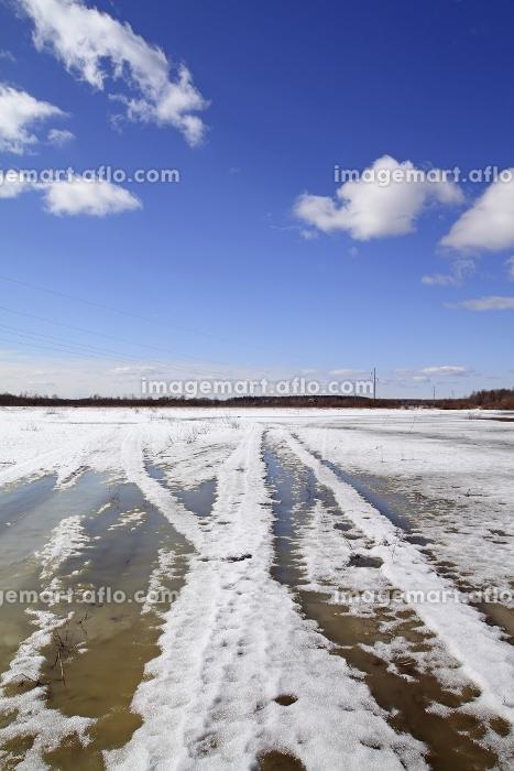 風景 青色 平原の販売画像