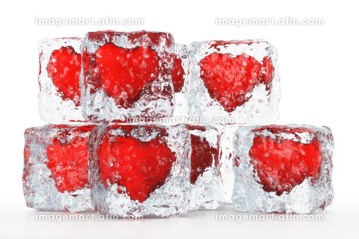 hearty ice cubesの販売画像