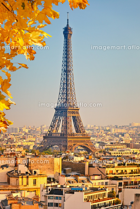 View on Eiffel tower at sunsetの販売画像