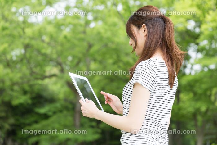 タブレットを見る女性 屋外の販売画像