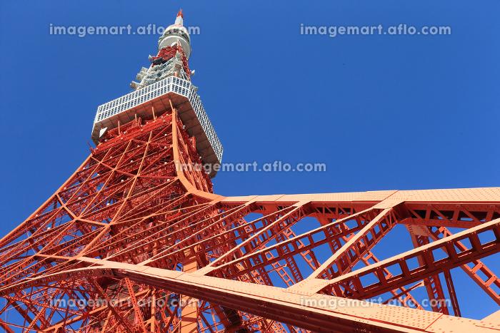 東京タワー 港区 東京 日本の販売画像