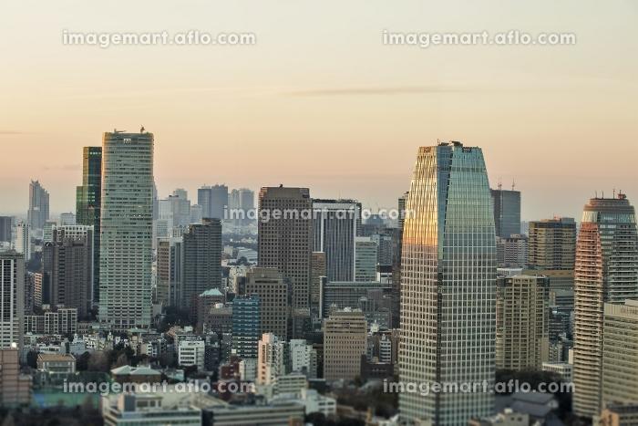 東京都 望むビル群の販売画像