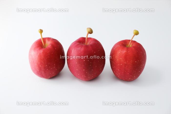 真っ赤な3個のアルプス乙女りんごの販売画像
