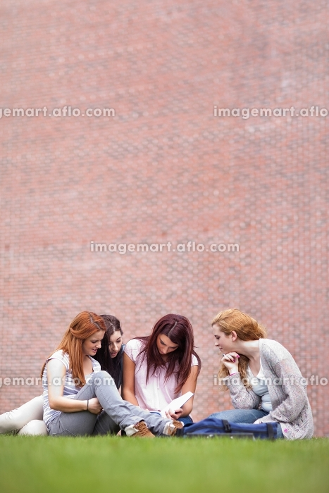 Portrait of friends reading a book while sitting on the lawnの販売画像