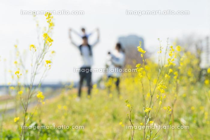 笑顔で野原を散歩する親子をアウトフォーカスで撮影の販売画像