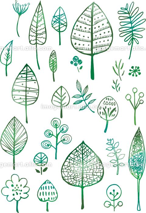 北欧風 木 手書き 線画 葉 葉っぱ 緑 イラスト アイコン グラデーション 水彩 ナチュラル イメージマート